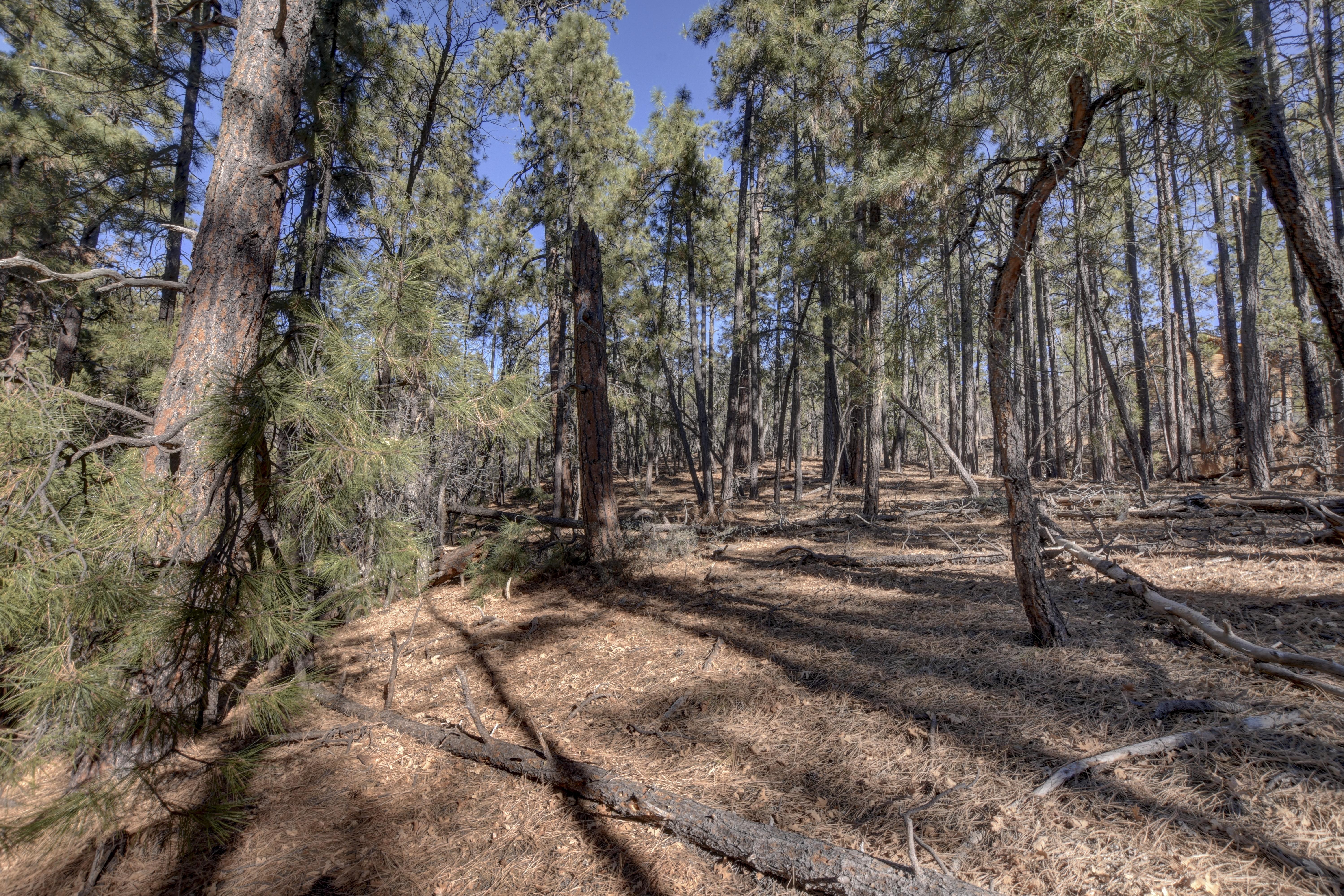 00 Sycamore Road, Prescott, AZ 86303